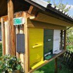 Überwachung der Gesundheit von Bienen mit einer Bienenstockwaage