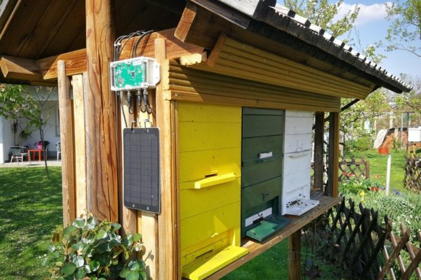 Eine Bienenstockwaage ist ein Schlüsselinstrument, um zu jeder Jahreszeit eine erfolgreiche Bienenpopulation sicherzustellen